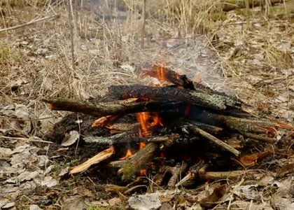 depositphotos_71647627_stock_video_bonfire_in_the_forest